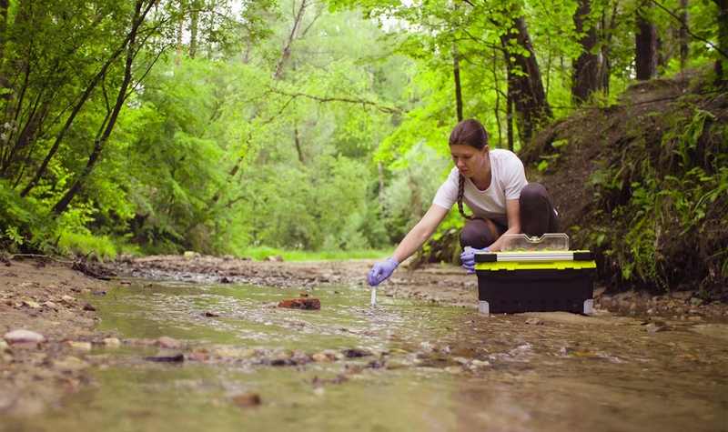 علوم زیست محیطی در نیوزلند
